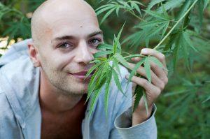Cannabis-and-cancer