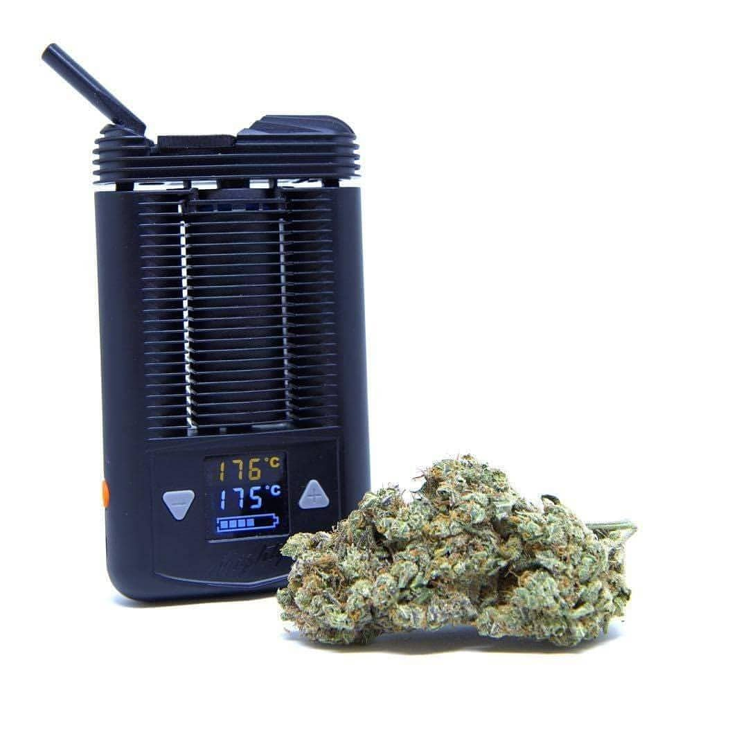 The Many Benefits Of The Vaporisateur Mighty