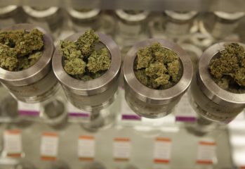 marijuana dispensary to visit