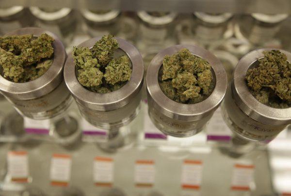 marijuana dispensary to visit