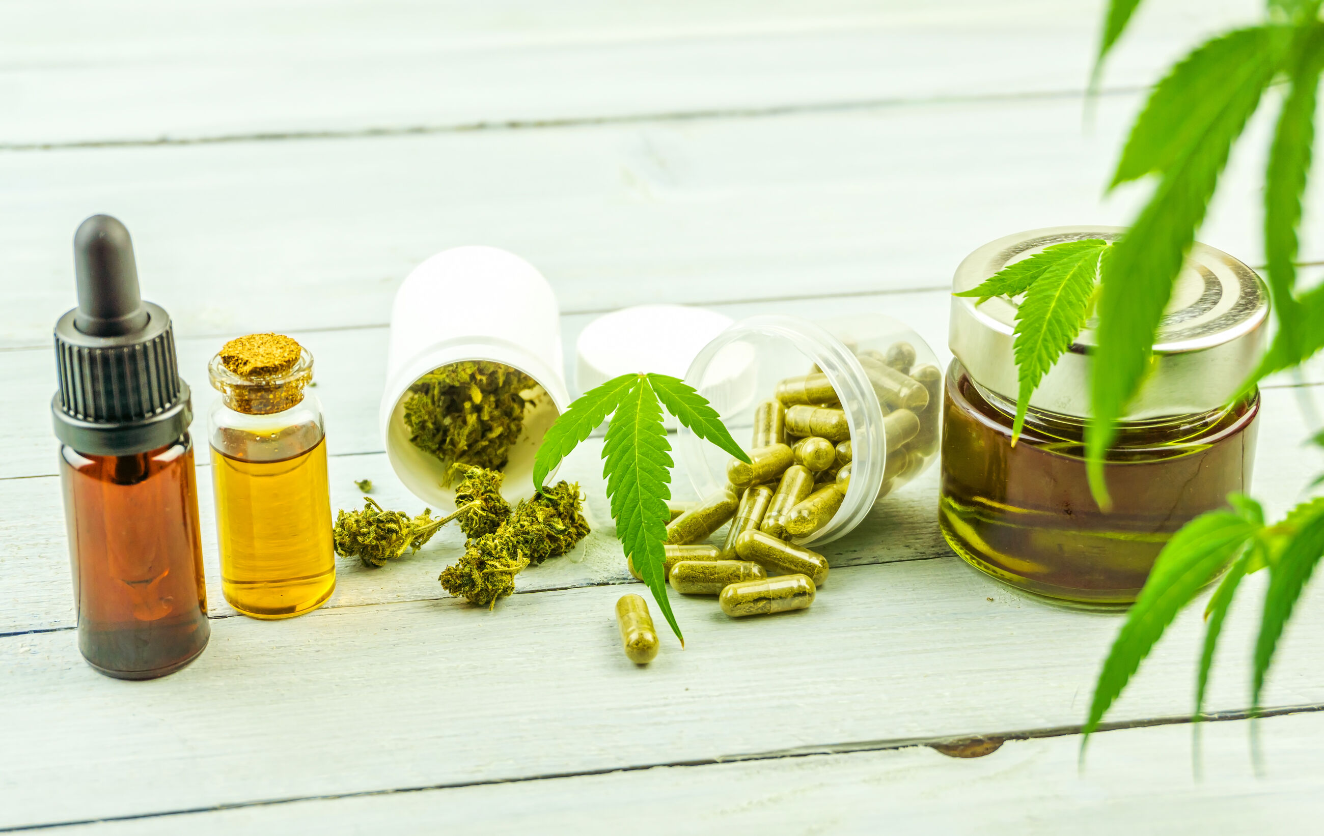 Where Can I Buy Wholesale CBD Online?