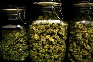 Order Marijuana Guide