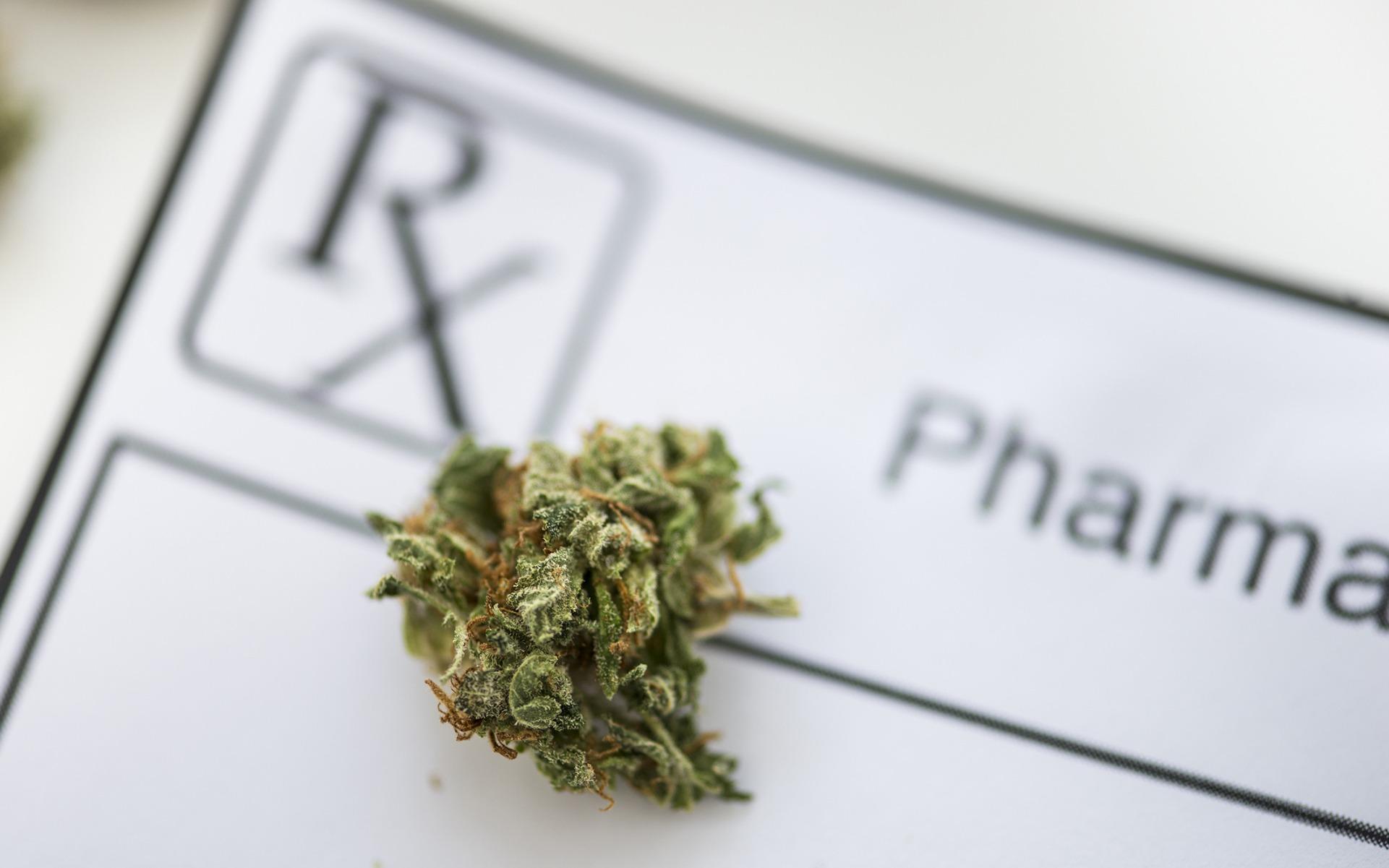 Medical marijuana is growing fast in Florida